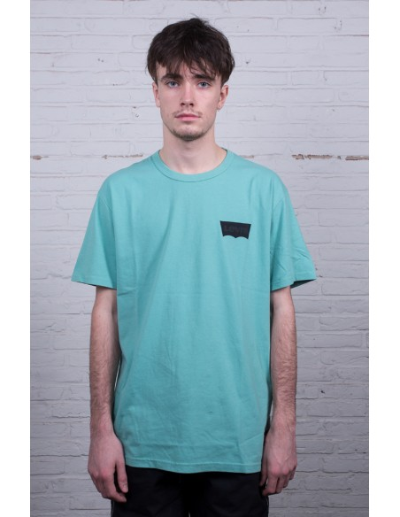 Skate Graphic SS Tee LSC