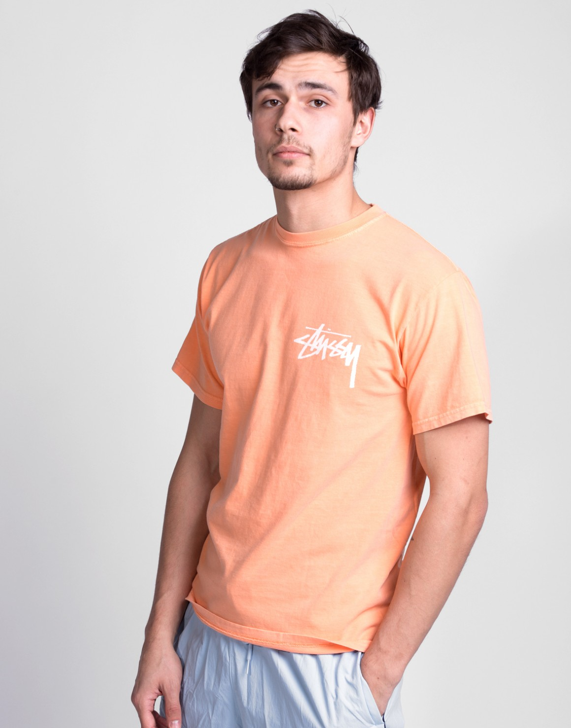 Stock Pig. Dyed Tee